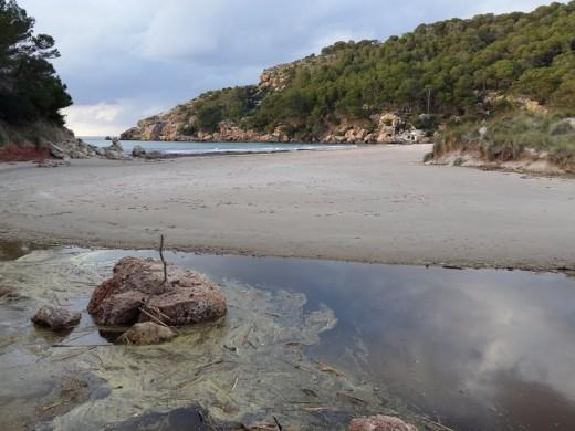 La playa des Bot recupera su arenal