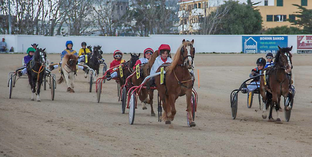 Imagen la prueba de Mini Trot tarde, con victoria para Ona Mata Seguí (Fotos: Carlos Orfila)