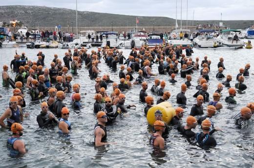 Nadadores al agua en la pasada edición