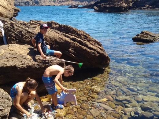(Fotos) Una brigada familiar para limpiar la costa entre Fornells y Tirant