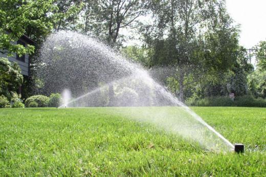 Si se riega a pleno sol se desaprovecha agua que se evapora por el calor.