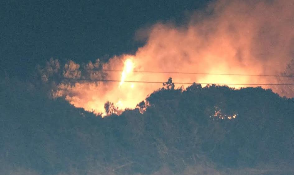 Imagen de las llamas quemando parte del bosque.