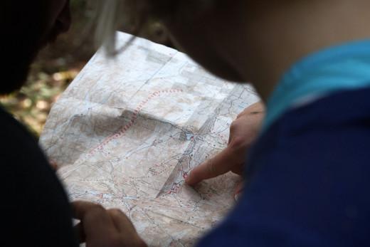 Buscar una planta o un animal será más fácil sobre este mapa