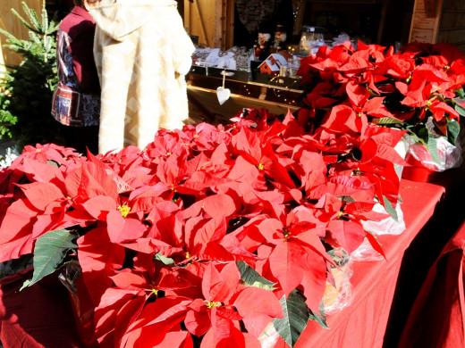 (Fotos) La Navidad ya se vende