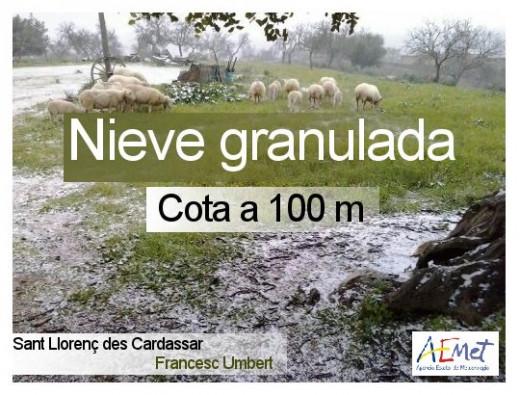 En Mallorca la cota de nieve se ha instalado en los 100 metros, según Aemet.