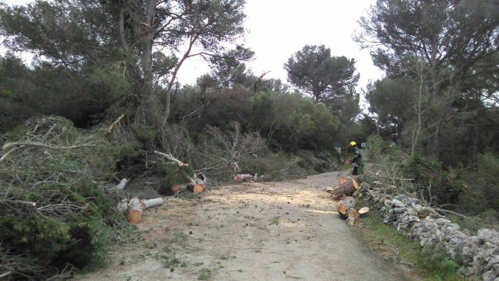 Imagen de una zona afectada.