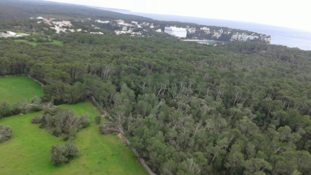 Fotografía aérea tras el paso del pequeño tornado.