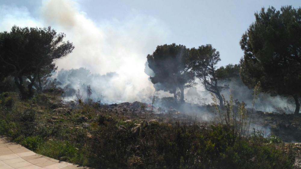 Incendio en la Zona de Coves Noves