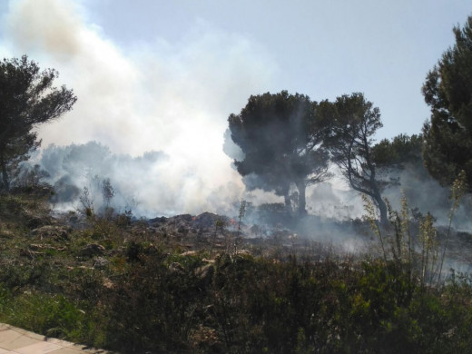 El primer gran incendio de la temporada quema 8.000m2 de pinar en Coves Noves