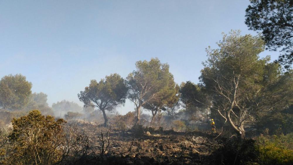 El incendio arrasó la zona de Coves Noves