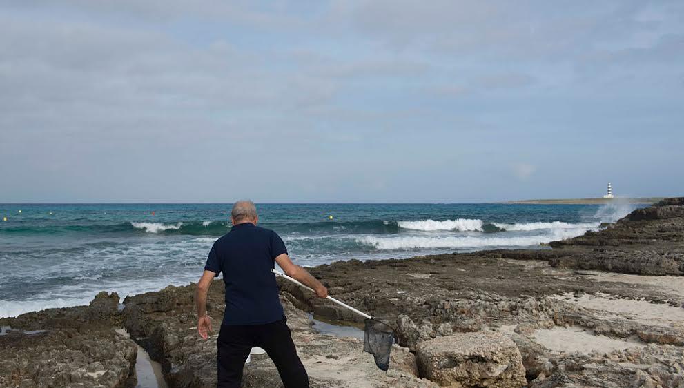 Un pescador, recogiendo velellas.