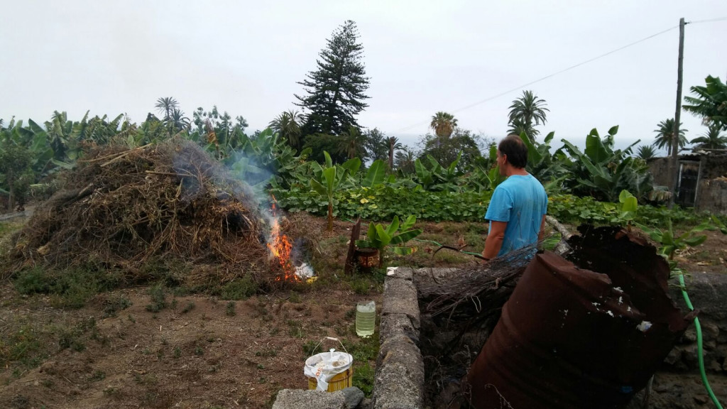 Las altas temperaturas han aconsejado anular la quema de rastrojos.