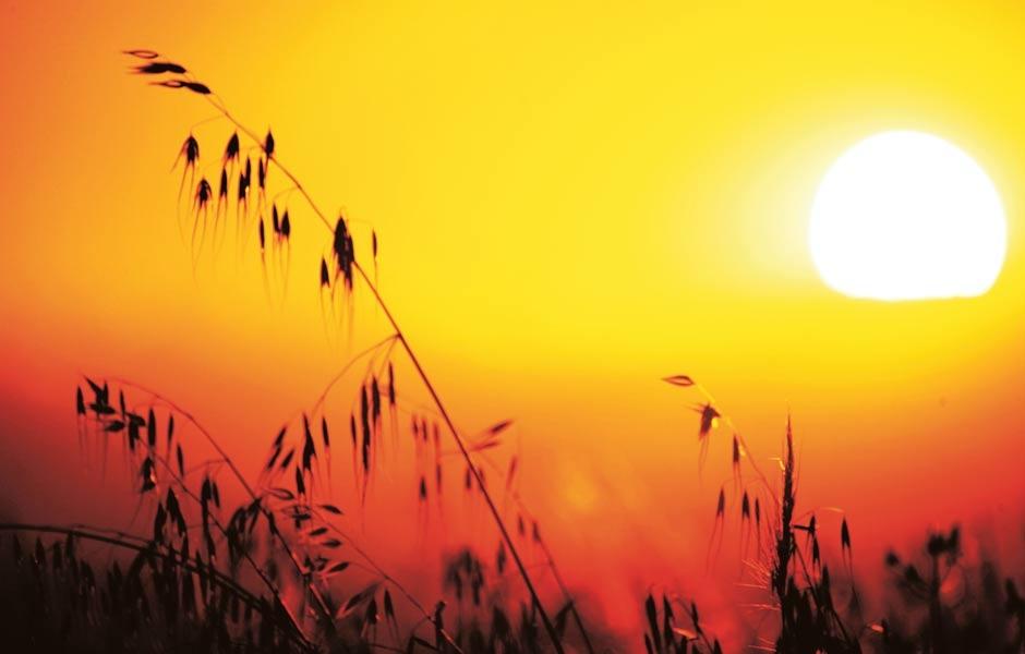 Las temperaturas serán muy elavadas este miércoles.
