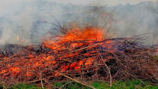 Imagen de quemas de rastrojos (Foto: Ferrán Herrera)