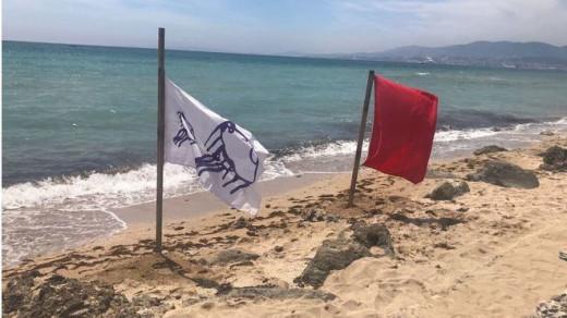 Banderas en una de las playas clausuradas (Foto: mallorcadiario.com)