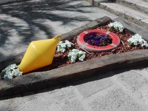 (Fotos) Maó empieza a florecer