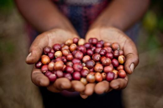 El Día del Comercio Justo promueve el consumo responsable y una producción más sostenible.