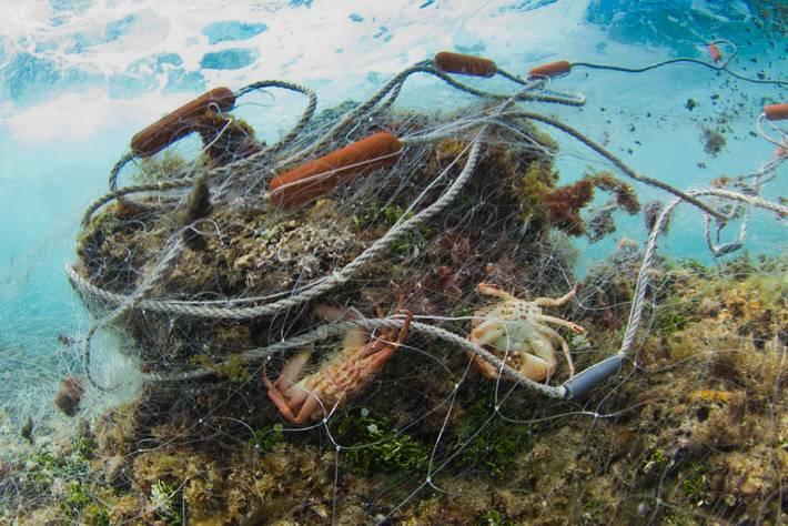 Redes en el fondo marino.
