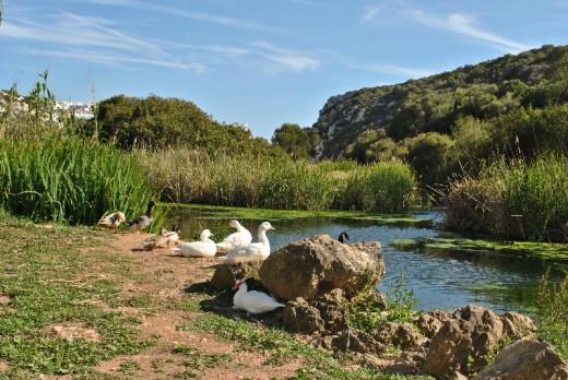 Menorca busca ofrecer experiencias de ecoturismo sostenible los viajeros