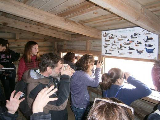"""Imagen de una de las actividades del programa """"Vive Menorca Biosfera"""""""