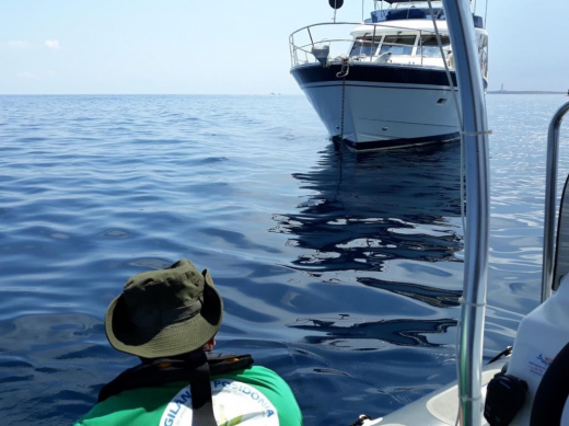 El Servicio de Vigilancia de la Posidonia trabajando en la costa de Menorca