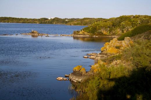 La Albufera des Grau es el núcleo de la Reserva de Biosfera de Menorca