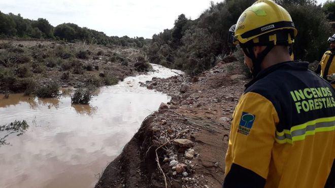 Esta mañana los efectivos de emergencia reanudan la búsqueda (Foto mallorcadiario.com)