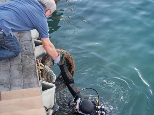 Sacan más de 3.000 kilos de basuras del fondo del puerto de Ciutadella