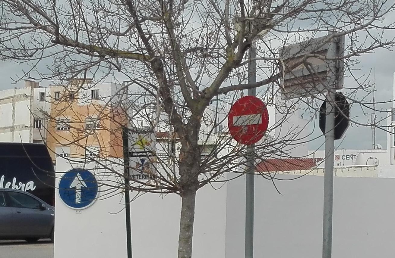 Las señales de tráfico e indicadores apenas se ven por el árbol incluso sin hojas.