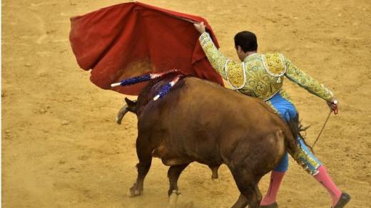 Vuelven los toros.