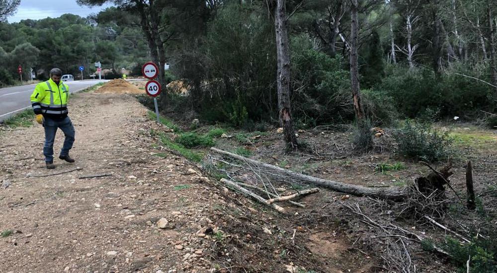 Aún quedan muchos árboles caídos por retirar (Foto: Tolo Mercadal)