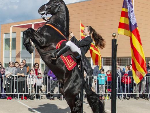 (Galería de fotos) Los animales, protagonistas de la fiesta de Sant Antoni en Sant Lluís