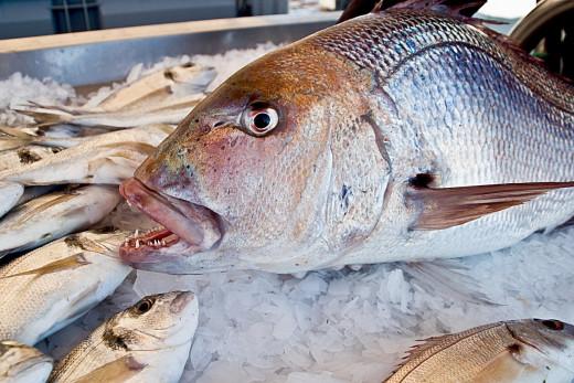 Algo está cambiando en la pescadería