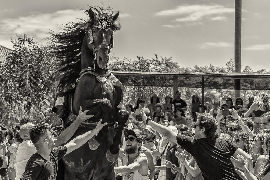 """""""Adoración"""", la fotografía de Juan Meco ganadora de la V edición de este concurso"""