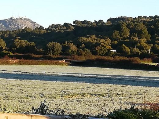 (Fotos) Amanecer helado de un bonito día en Menorca