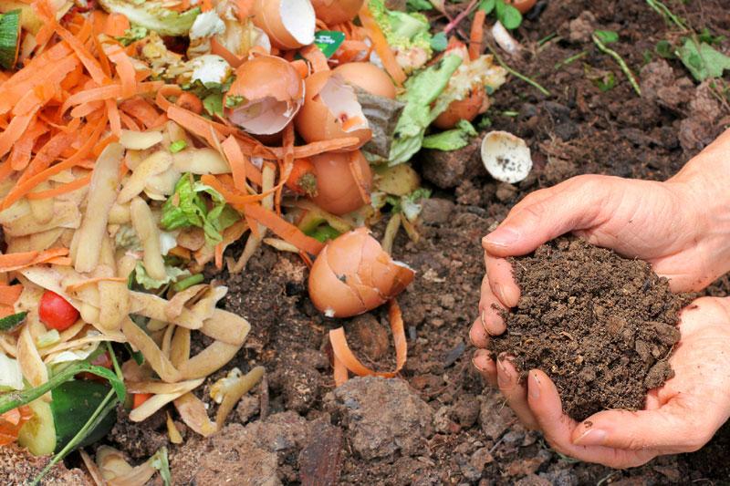 Compost casero.