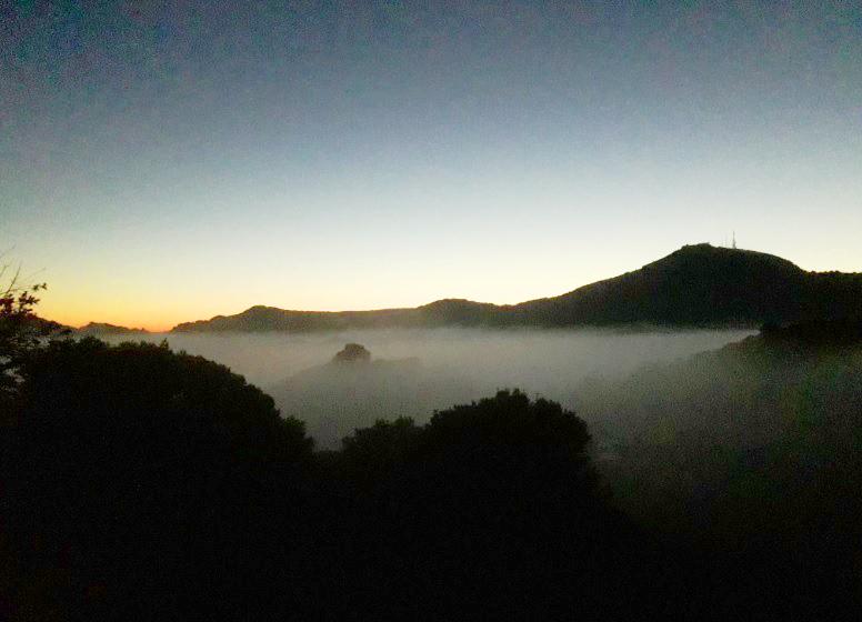 Primera luz y niebla.