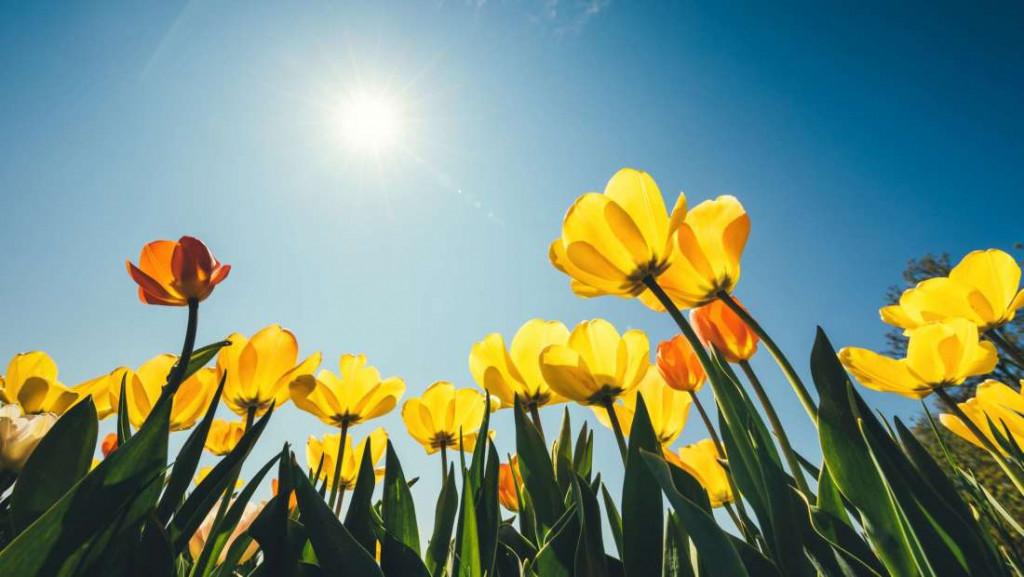 La temperatura irá subiendo hasta junio y tendrá una media de 18 grados.