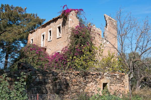 Casa en ruinas.