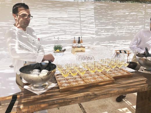 (Fotos) Torralbenc presenta sus nuevos vinos