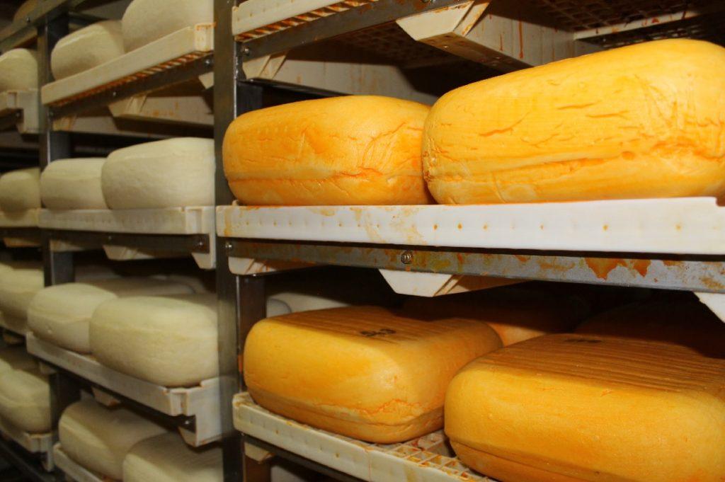 Según su tiempo de maduración el queso ofrece diferentes texturas y sabores
