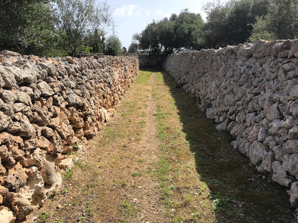 Camino rural de Ciutadella (Foto: Ayuntamiento de Ciutadella)