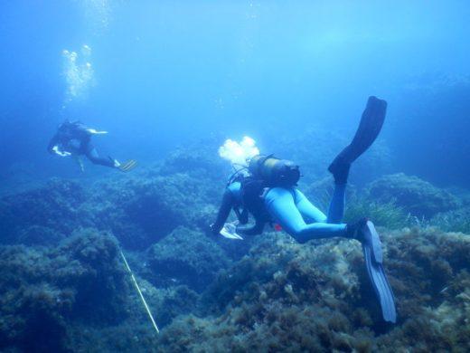 Estudio del fondo marino
