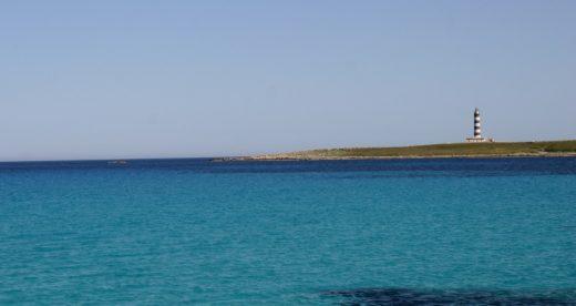 Con esta jornada se pretende preservar la Illa del Aire (Foto: Menorca Reserva de la Biosfera)