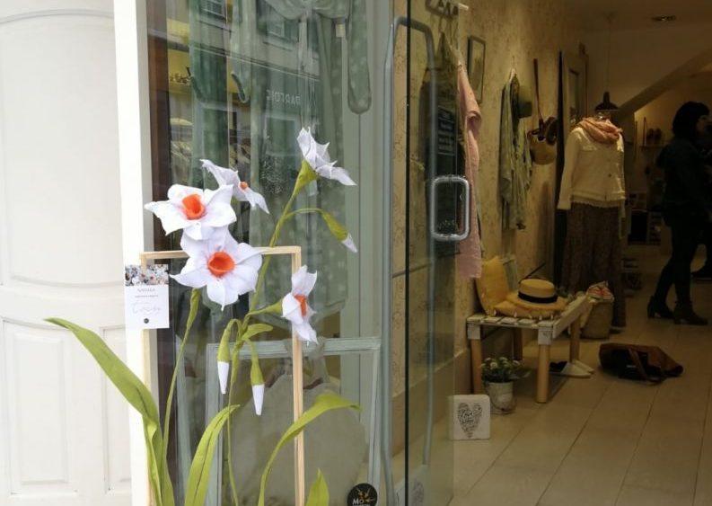 Siguiendo la ruta se pueden conocer alrededor de un centenar de flores de Menorca y sus nombres (Fotos: Mô Comercial)