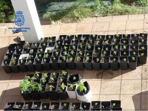 (Fotos) Cinco detenidos en Menorca en dos operaciones antidroga