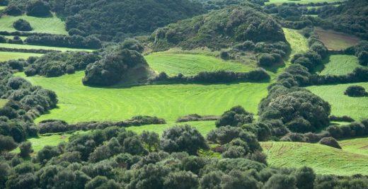 Protección del paisaje.