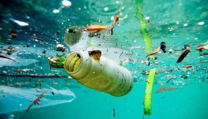 Plásticos en el Mediterráneo (Foto: Ambientum)