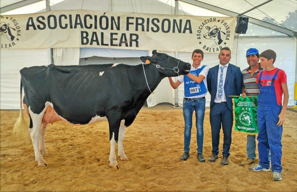 La ganadería Son Quart de Ciutadella recibió varios premios en la Feria de Campos