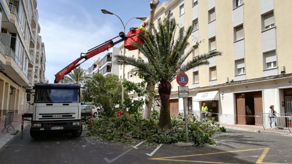 La brigada, retirando el árbol (Fotos: Tolo Mercadal)
